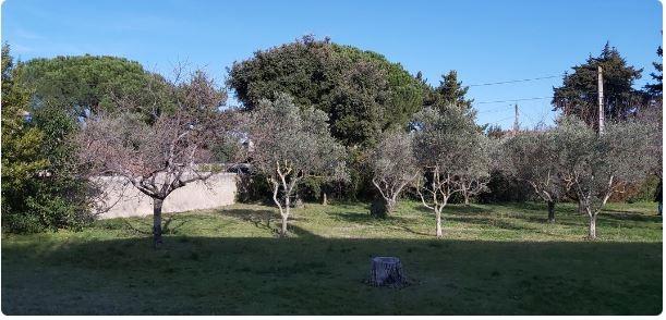 Carpentras : Idéal pour les investisseurs Terrain + Maison 196 000 €